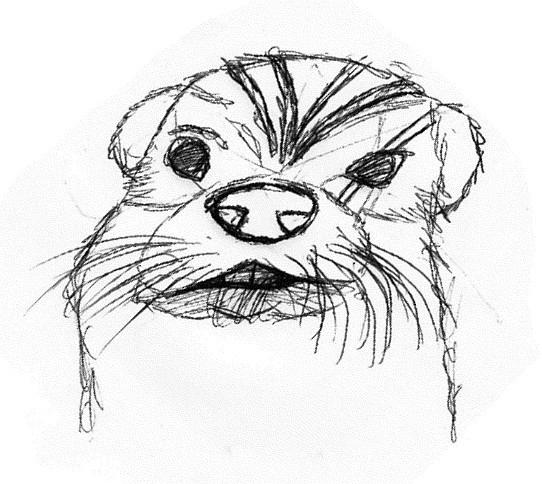 """Mindestens zwei Teammitglieder bestanden aus humanoiden Pelzwesen mit Otter-Gesichtern und """"Kriegsbemalung"""" auf der Stirn. Warum auch nicht? :D"""