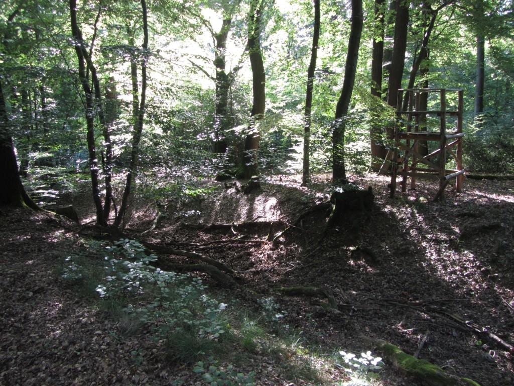 Waldgraben und Jägersitze. Nicht ungewöhnlich in solchen Wäldern...